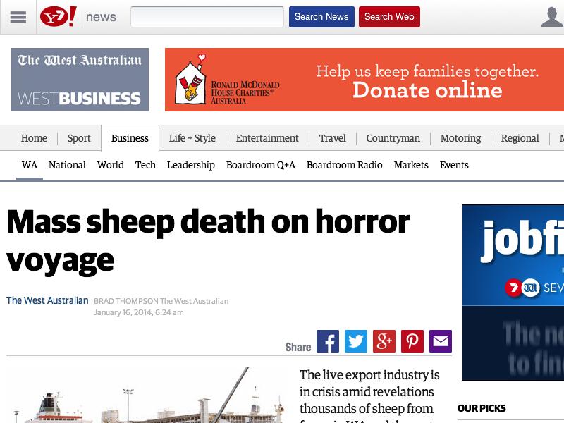4,000 Australian Sheep Perish On Brief Ship Voyage
